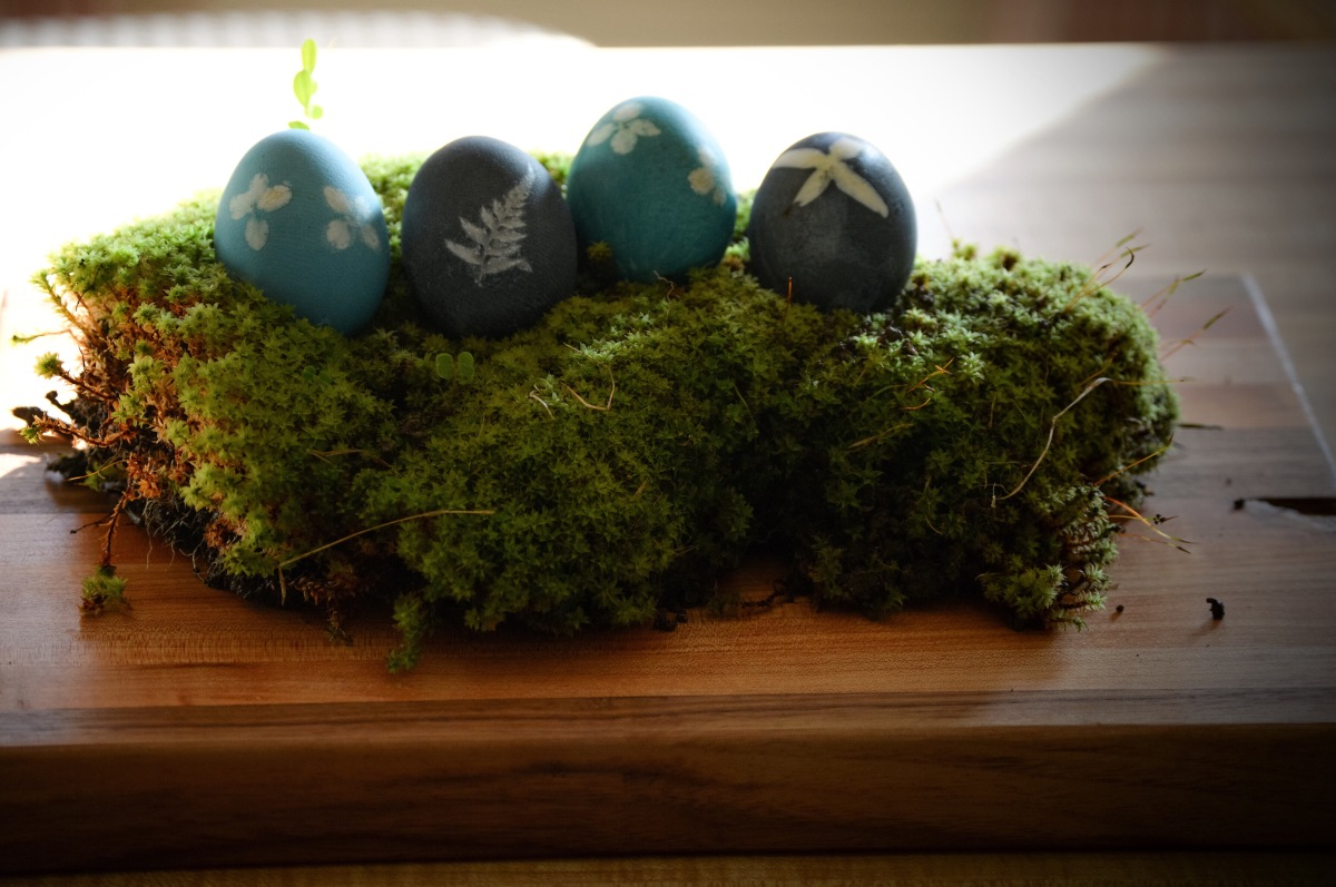 Spring: Naturally dyed eggs