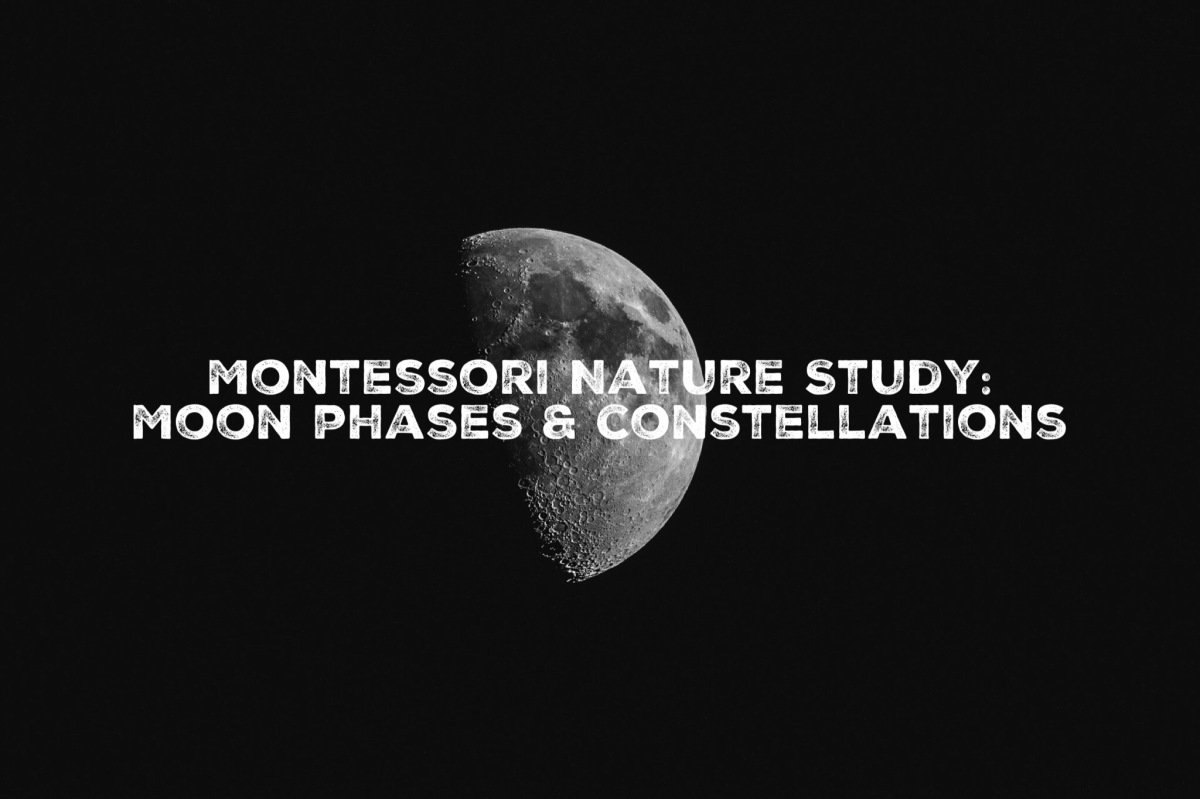 January Nature Study: Moon phases & constellations
