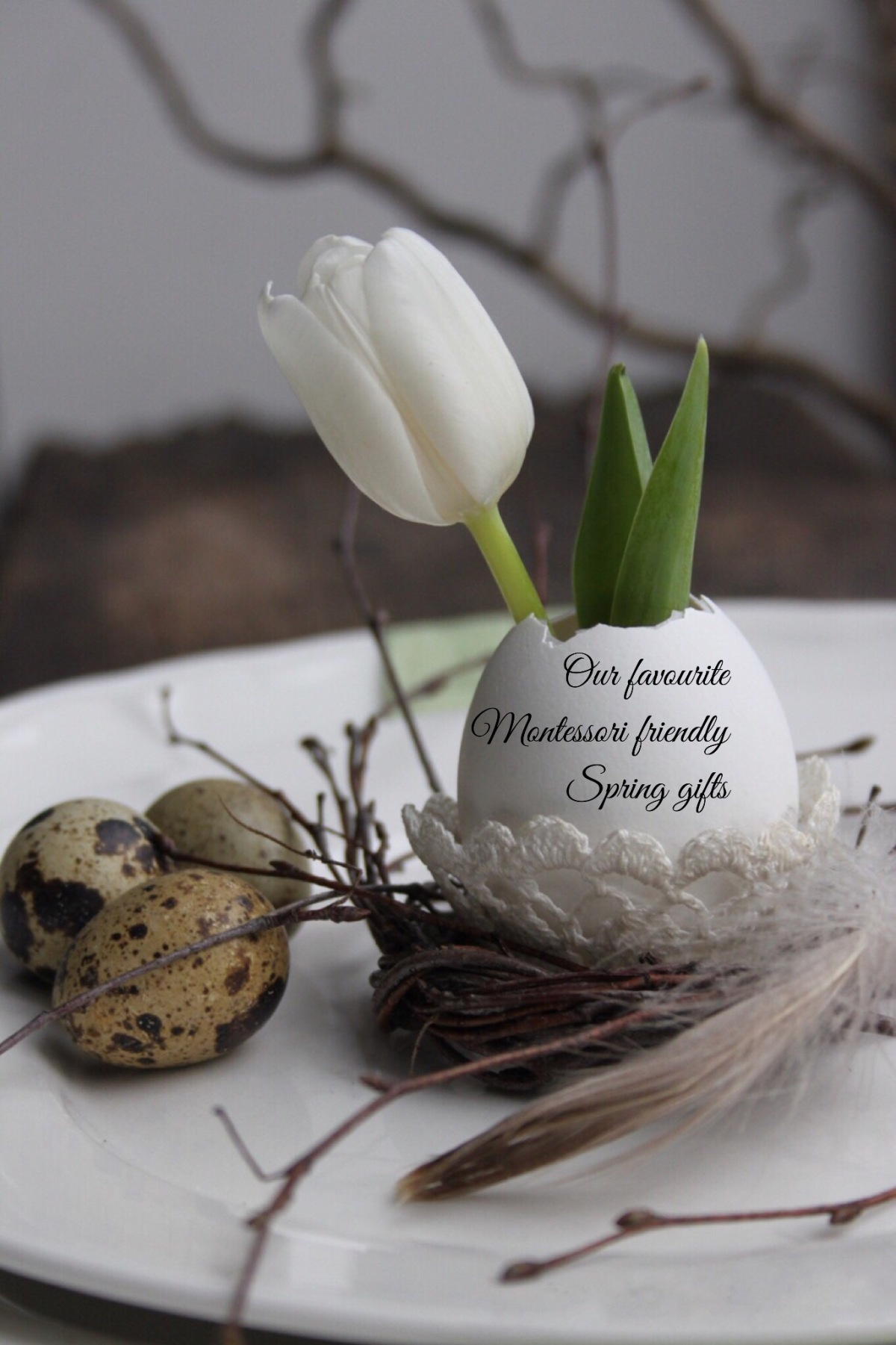 Our favourite Montessori friendly Spring gifts