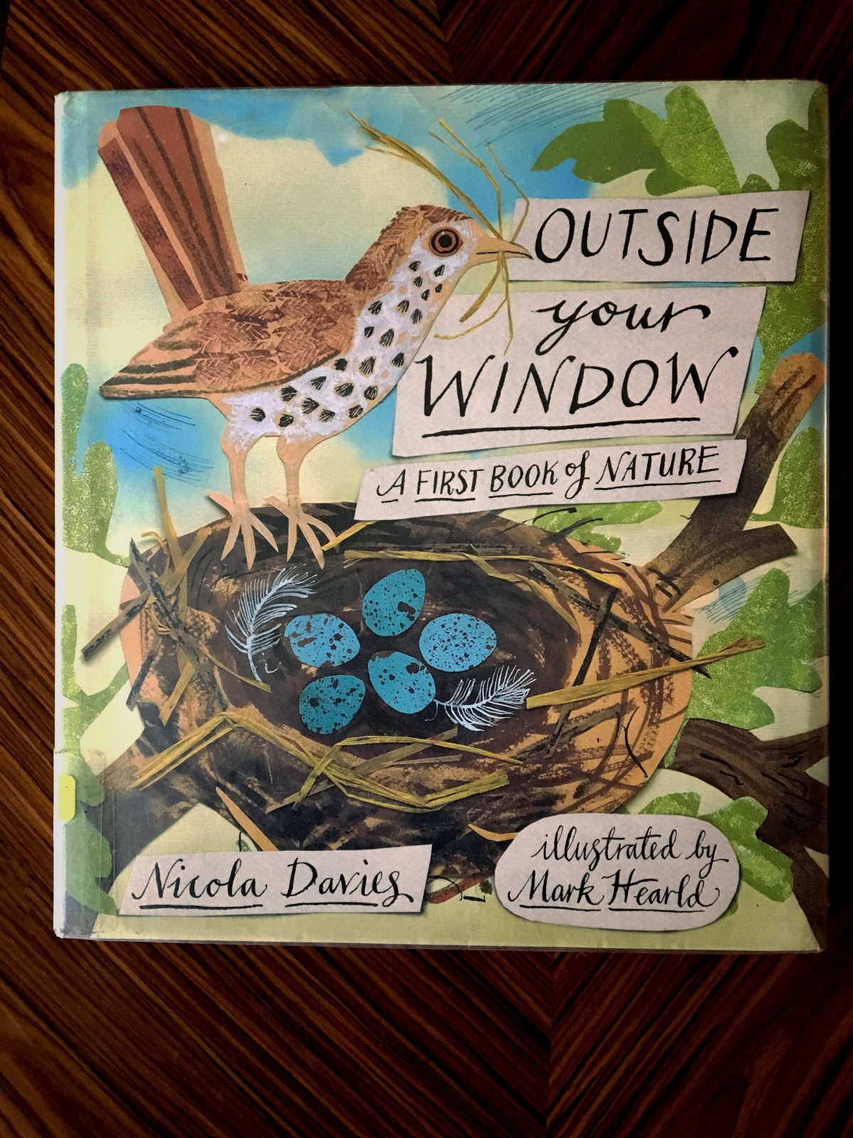 Sunday Book Club: Outside your window: A first book of nature