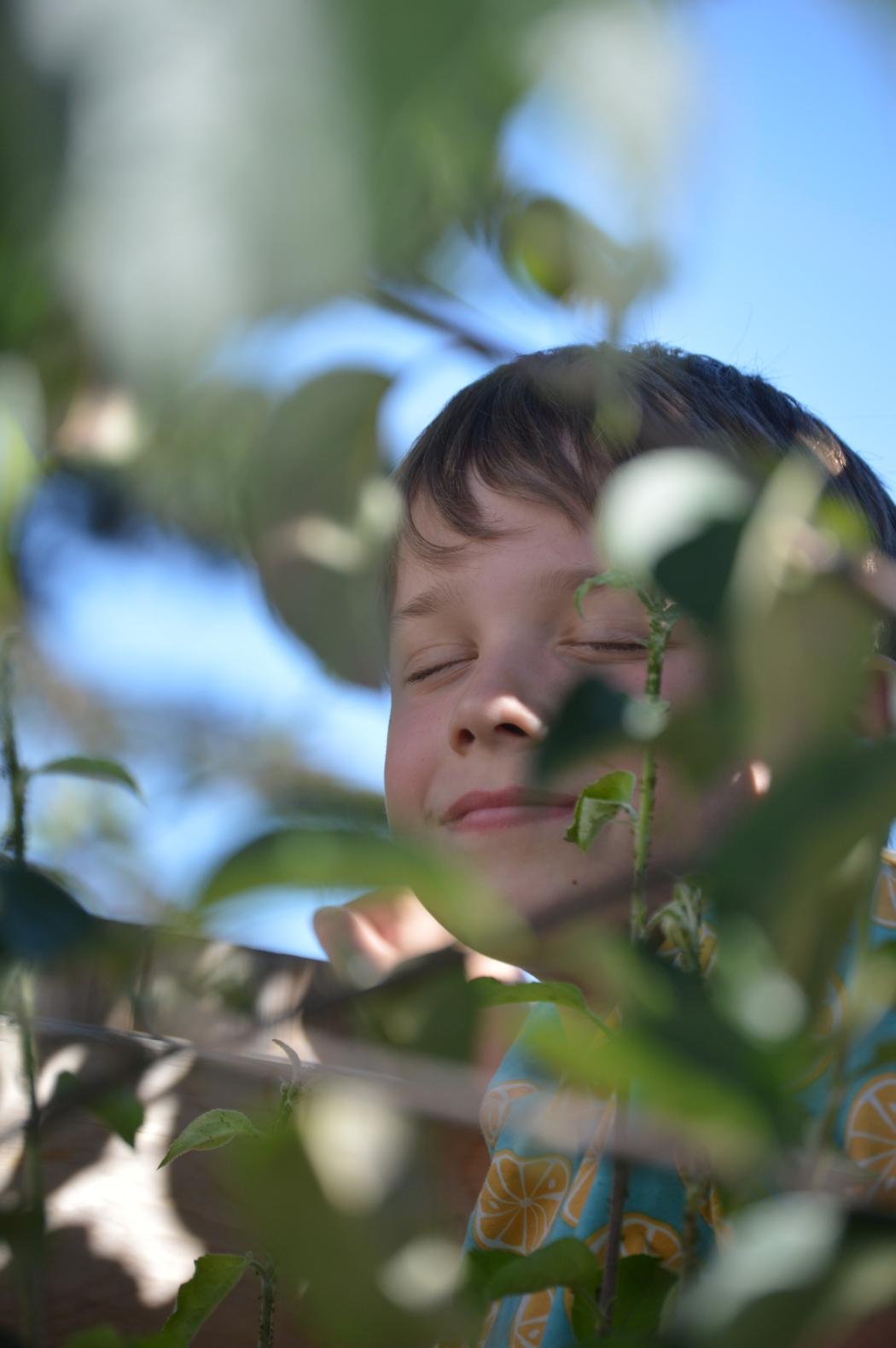 Our Montessori Life 2020: Our Essential 9